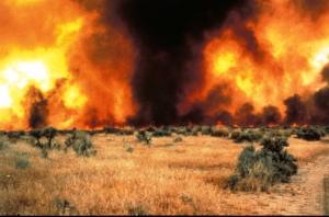 Idaho_wildfire_(8598791096)